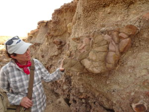 Napudet: Sidney Hemming looking at a complicated outcrop