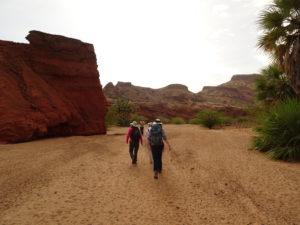 Lothagam: Troy Rasbury, Francis Ekai, Sidney Hemming, and Elena Steponaitis walk toward the outcrop