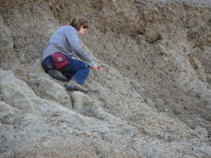 Elena Steponaitis looking for carbonate in the dirt